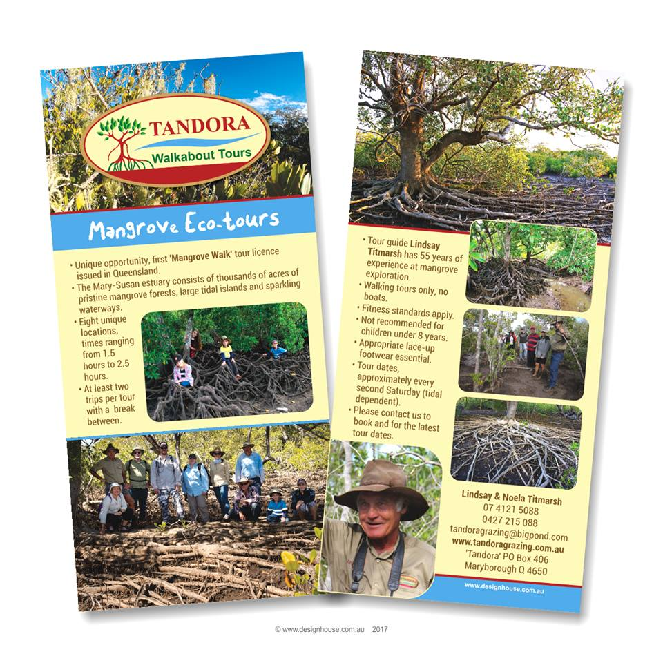 Tandora Walkabout Tours - Mangrove Eco-Tours